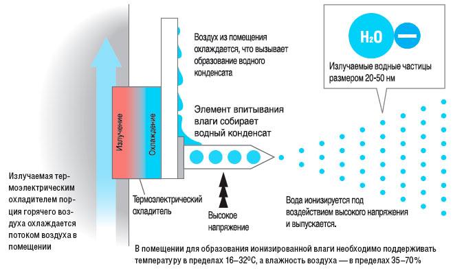 каким образом появляется конденсат